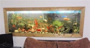 120 gal Fish Tank For Sale