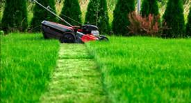 Gardener Grass Cutting Lawn Mowing Hedge Trimming Maintenance