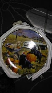 picture on a plate