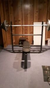 Northern Lights Weight Bench