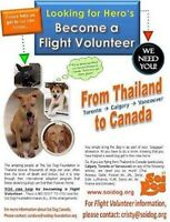 Thailand:  Travellers going to Thailand for Flight Volunteers