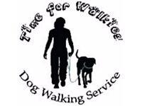 Time for Walkies! Dog Walking Service