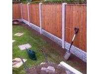 Grass cutting/hedges/shrubs/trees pruned/general gardening