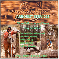 *CHEAP* Arborist Services - ALL-IN-ONE