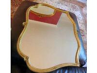 Ornate Wall Mirror ~ Gold Frame ~ Fine Detail