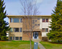 Skyview Apartments -  Apartment for Rent