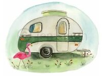 Spare piece of grass? Tenant in waiting for outdoors caravan living! :)