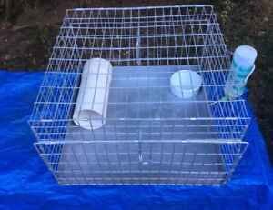 Guinea Pig carrier/cage