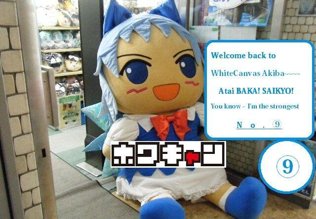 WhiteCanvas Akiba Moe Store