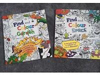 Set of 2 Find and Colouring Books
