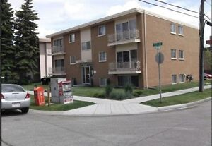 OUT OF THE BOX OFFER!!! Renovated One Bdr, Inner City... Walk or