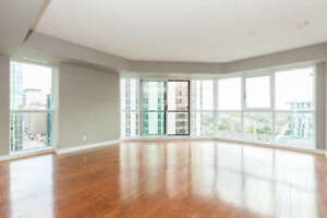 Beautiful Modern Downtown 2 bed 2 bath Condo for Sale