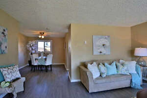 Perfect Starter Home, Investment Property, or BOTH! Cambridge Kitchener Area image 5