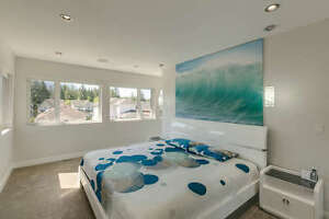 Stunning Contemporary Custom Home North Shore Greater Vancouver Area image 7
