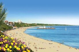 Bournemouth Language Tuition - French and English