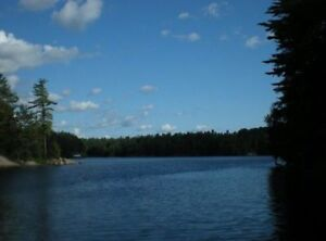 LAST MINUTE 1/2 PRICE FULL FEATURE WATERFRONT COTTAGE MOTORBOAT