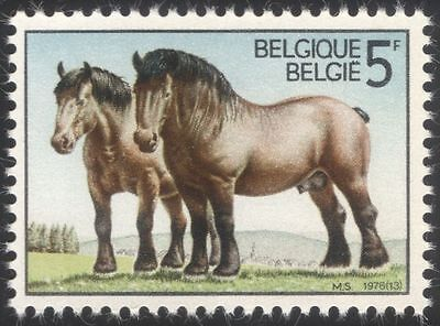 Belgium 1976 Ardennes Draught Horses/Working Animals/Nature/Transport 1v s5705d