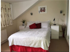 Double room / ensuite in Hove