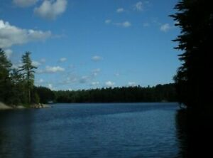 ▲CANADA DAY STILL AVL. ▲ - INCL. MT BOAT, CANOE, HOT TUB, SAUNA
