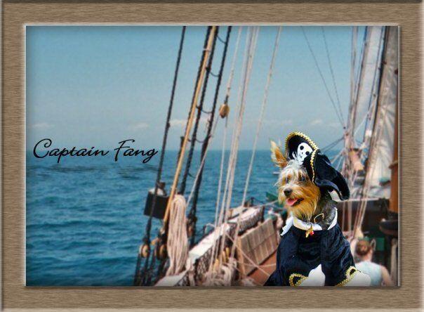 Captain Fang's Treasures