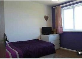Room to rent Newport
