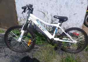Two used bikes Cambridge Kitchener Area image 1