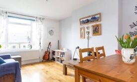 1-bedroom apartment for rent in London N1 Bansbury Angel Islington