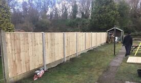 🍁New Flat Top Feather Edge Fence Panels • Excellent Quality •