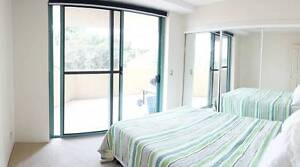 Room available for couple or single, fully furnished apartment. East Brisbane Brisbane South East Preview