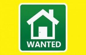 WANTED: Apartment or House