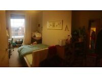 Large double room in a homey two-bedroom flat
