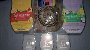 Scentsy wax lot - plus 1 if picked up by Thursday