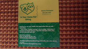 In Your Home Pet Sitting