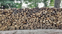 Premium Seasoned Firewood: FREE DELIVERY of 4 or more cords