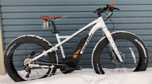 Fatbike Electric Raleigh Magnus