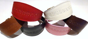 Embossed Leather  Puppy, Whippet, Greyhound Collar 7 Colours 3 Sizes (Code DA51)