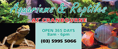 Aquariums and Reptiles Cranbourne