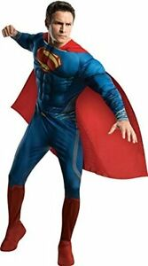 Adult Superman Muscle Costume