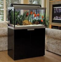 WANTED: Fluval Studio or Profile Aquarium