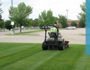 Lawn Maintenance Business for Sale in Hamilton area