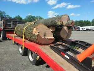 We have logs for milling