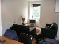Bright, one bedroom, top floor furnished flat for rent clifford street.