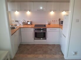 AVAILABLE 13th MARCH 2017: UNFURNISHED one bedroom flat in CATHCART