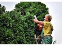 gardener/handyman