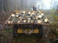 LOGS BY THE LOGMAN THATS FREEZING NOT WITH THE LOGMAN CALL NOW