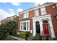 Huge (829 sq ft) Sunny, Garden Flat in Herne Hill/Brixton/Tulse Hill, by Brockwell Park