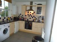 Large double in fantastic flatshare with 2 others