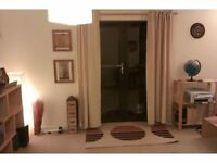 BEAUTIFUL, SPACIOUS TWO BEDROOD FLAT IN THE CITY CENTRE