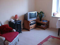 Edinburgh City Centre Flat One Bedroom