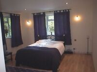 Exceptional en-suite bedroom in professional home. Fantastic location. Bills included